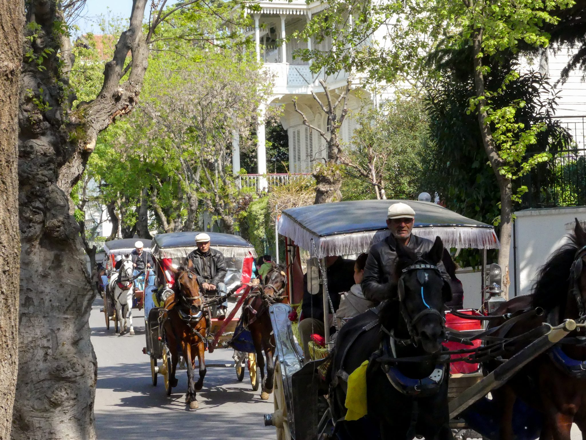 Horse carriages in the Prince Islands
