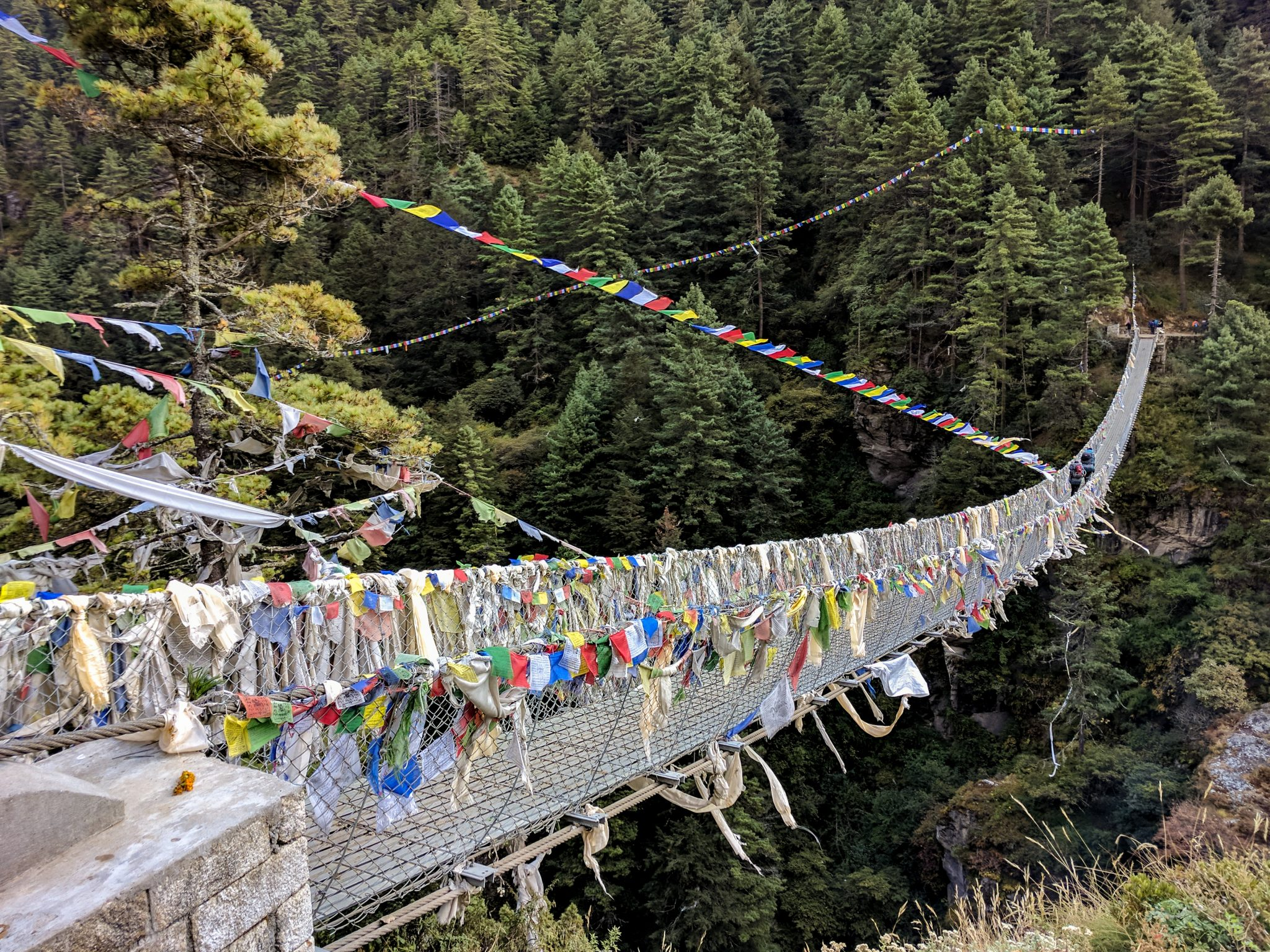 Everest Trek Bridge