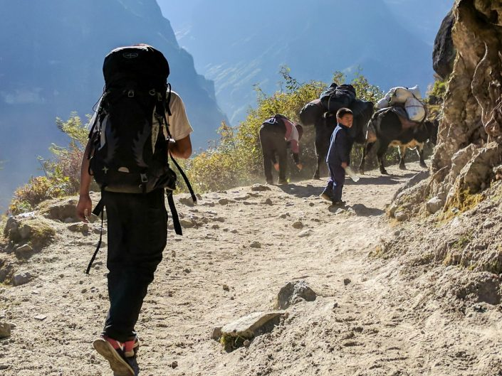 Everest Trek Sherpa Walking